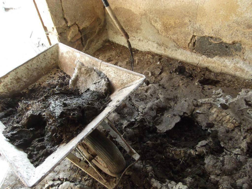 Ein Bodenbelag aus Exkrementen und vergammeltem Stroh